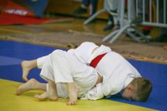 Международный турнир по дзюдо