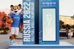 У Чемпионата мира по волейболу появился талисман